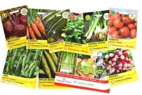 Groupon Goods Global GmbH - Nurseryman Choice Vegetable Seeds - Save 0%