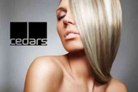 Cedars Hairdressing - Half Head Highlights or Full Head Tint With Cut and Finish Plus Indian Head Massage - Save 70%