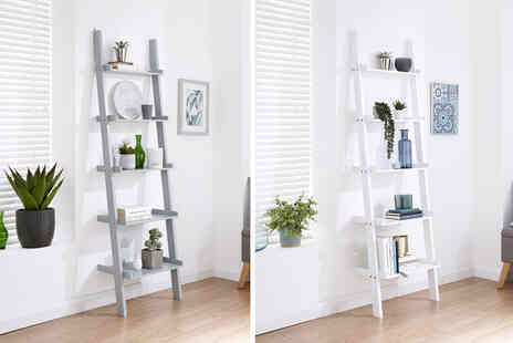 Wowcher Direct - Five tier ladder style wall rack - Save 57%