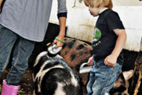 Stockley Farm Park - Admission for Two Adults and Two Children - Save 52%