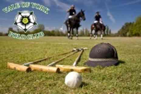 Vale of York Polo Club - Two Hour Polo Lesson For One - Save 64%