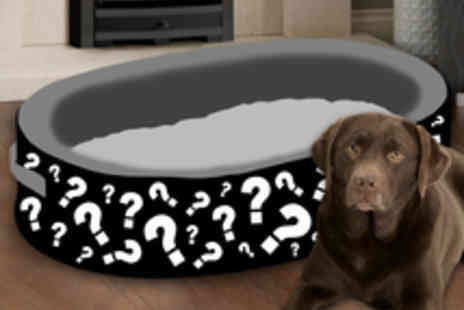 Scruffs - Off Mystery Memory Foam Dog Bed - 60cm X 40cm - Save 74%