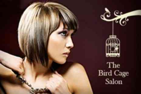 The Birdcage Hair Salon - Restyle With Blow Dry and Conditioning - Save 60%