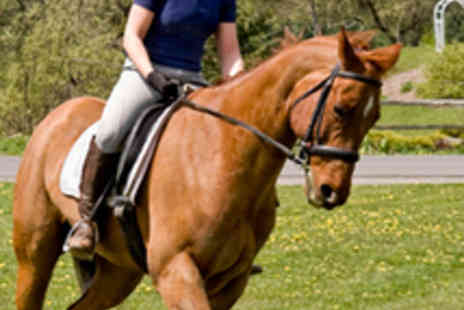 The Cabin Equestrian Centre - Two Horse Riding Lessons - Save 61%