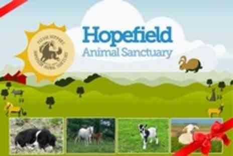 Hopefield Animal Sanctuary - Animal Adoption Certificate and Family Entry - Save 45%