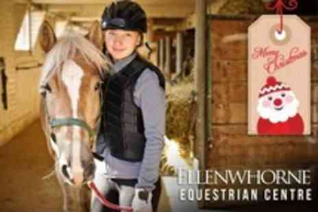 Ellenwhorne Equestrian Centre - Full Day of Horse Riding and Stable Management including Lunch - Save 59%