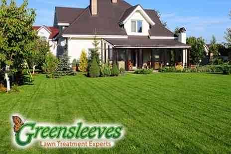 Greensleeves - Two Lawn Treatments - Save 60%