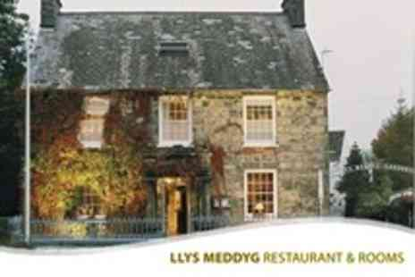 Llys Meddyg - One Night Stay For Two With Three Course Dinner and Breakfast - Save 55%