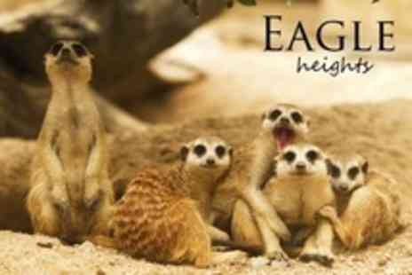 Eagle Heights - Wildlife Park Family Admission - Save 52%