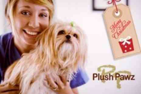 Plush Pawz - Dog Grooming Package With Small, Medium or Large Dog - Save 50%