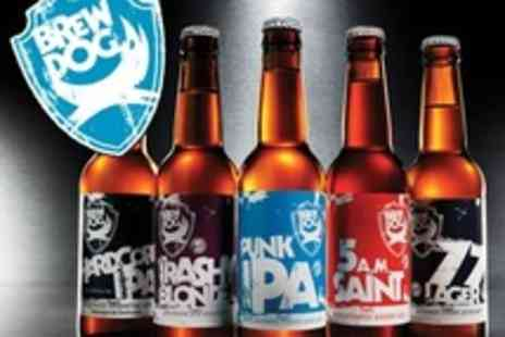 BrewDog - Beer Tasting Session With Cheese and Meat Platter for One - Save 20%