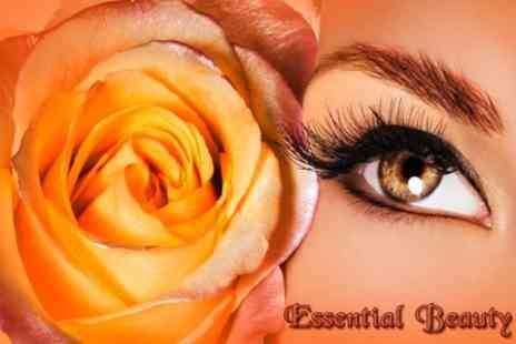 Essential Beauty - Choice of Hollywood Lashes or HD Brows - Save 70%