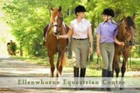Ellenwhorne Equestrian Centre - Stable Day Horse Riding Lesson or Hack, Grooming and Lunch - Save 63%