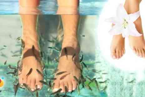 Neat Feet - 30 Min Garra Rufa Spa Therapy for £9 at Neat Feet Spa (Value £25) - Save 64%