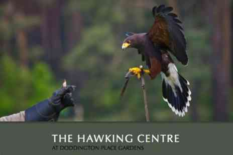 The Hawking Centre - Two Hour Falconry Course for £19 - Save 62%