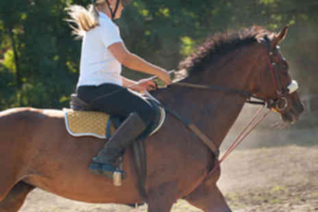 The Cabin Equestrian Centre - Hour Long Group Riding Lesson or Hack - Save 65%