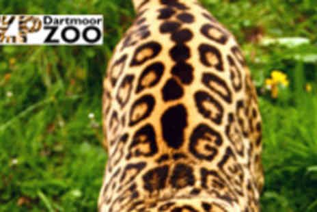 Dartmoor Zoo - Two Adult Tickets - Save 52%
