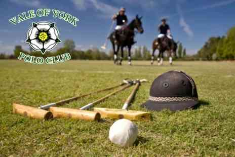 Vale of York Polo Club - Two 60 Minute Polo Lessons for £29 - Save 64%