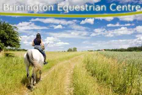 Brimington Equestrian Centre - Half Day Introduction To Horse Riding For £30 (Value £100) - Save 70%