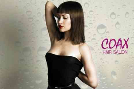 Coax Hair Salon - Restyle and Blow Dry With Hot Oil Treatment - Save 59%