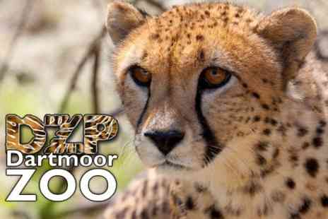 Dartmoor Zoo - Dartmoor Zoo Entry For Two Adults - Save 59%