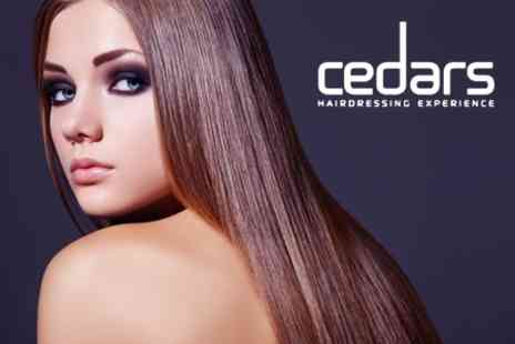 Cedars Hairdressing - Cut and Finish With Conditioning Plus Top Section Highlights or Root Tint - Save 67%