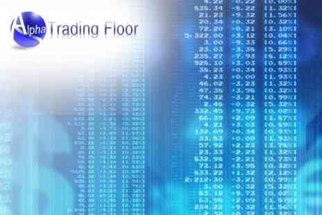Alpha Trading Floor - Forex Trading One Day Beginners Course on Currency Trading - Save 85%