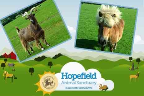 Hopefield Animal Sanctuary - Family Entry Including Gift - Save 50%