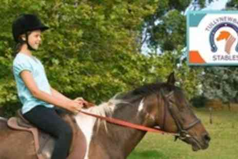 Tullynewbank Stables - Two Horse Riding Lessons For Juniors - Save 61%