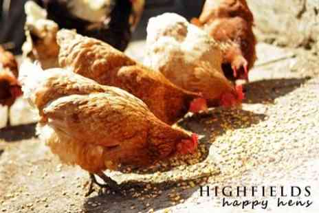 Highfields Happy Hens - Open Farm Experience For Family Including Childrens Lunch - Save 67%