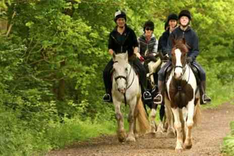 Trent Park Equestrian Centre - Horse Riding With Afternoon Tea - Save 61%