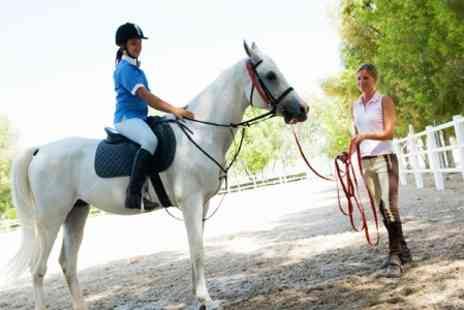 Chobham Equestrian Centre - Horse Riding For One - Save 37%