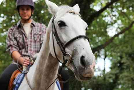 Hopeful Earl Riding Centre - Two and a Half Hour Countryside Hack - Save 56%