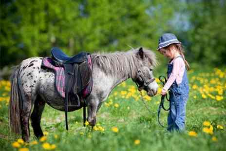 Ellenwhorne Equestrian Centre - Childrens Experience - Save 40%