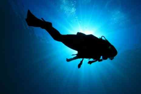 Cardiff Octopus Diving Club - Taster Session - Save 50%