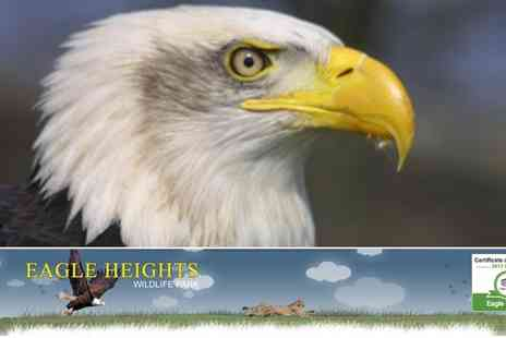 Eagle Heights - Eagle Heights Wildlife Park for Two Adults and Two Children - Save 48%