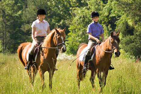 Aldersbrook Riding School - Adult Horse Riding Lesson - Save 50%