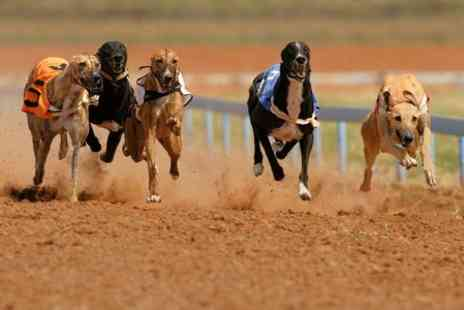 Drumbo Park - Entry to Dog Racing With Programme Plus Drink - Save 63%