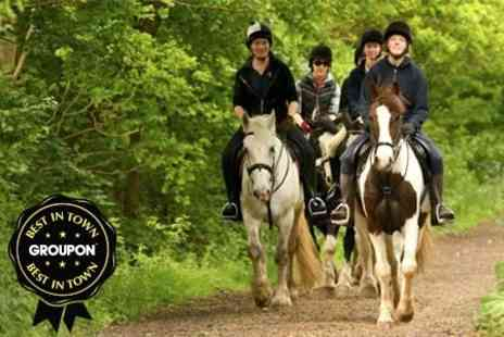Trent Park Equestrian Centre - Four Week Course - Save 55%
