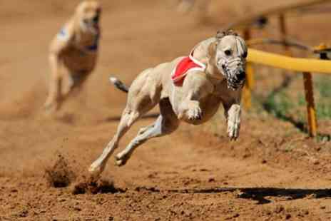 Peterborough Greyhounds - Greyhounds Race Night and Meal For up to Four Plus Race Sponsorship - Save 62%