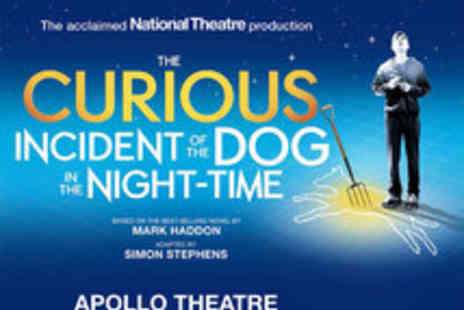 Apollo Theatre - Tickets to The Curious Incident of the Dog in the Night Time - Save 30%