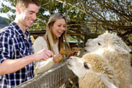 The Llama Park - General Admission to The Llama Park - Save 57%