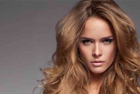 Sante Spa - Cut and Blow Dry With Half Head Highlights - Save 46%