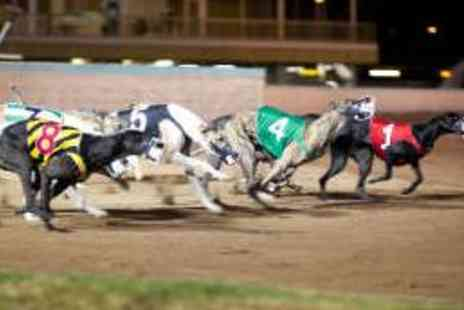 Drumbo Park - Greyhound Racing Admission with Tote Voucher - Save 62%
