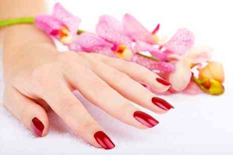 Miss Hollywood - Acrylic Nails Full Set of Natural or French Tips - Save 50%