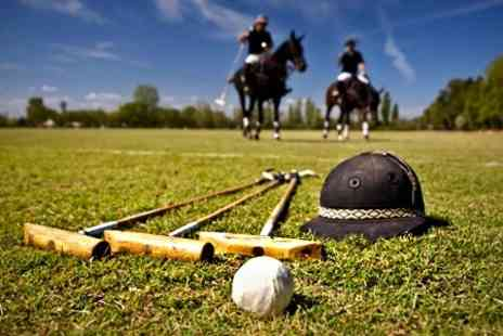 Vale of York Polo club - Two Hour Lesson For One - Save 64%