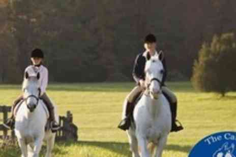 The Cabin Equestrian Centre - Two Individual 60 Minute Horse Riding Lessons - Save 61%