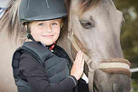 Middleton Riding Centre - Pony Party For Five - Save 65%
