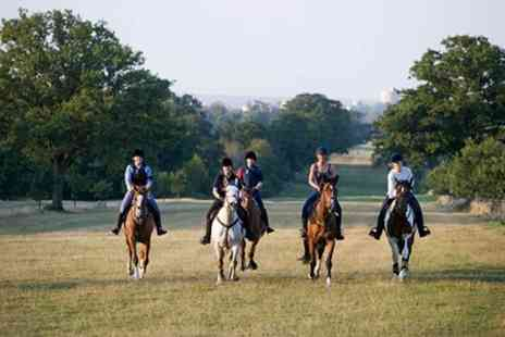 Wayside Stables - Horse Riding Two Hour Hack Through Windsor Great Park - Save 50%