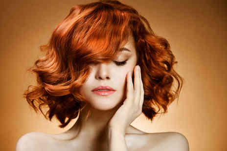 House of Kendal - Full head of colour, cut and blow dry plus a glass of bubbly on arrival - Save 78%
